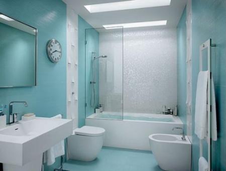 dizajn-sanuzla-tualetnoj-komnaty[1]