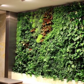 Озелененине офиса - фото (10)