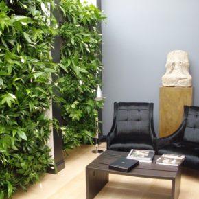 Озелененине офиса - фото (11)
