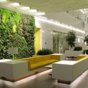Озелененине офиса - фото (14)