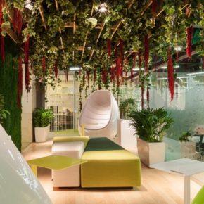 Озелененине офиса - фото (23)
