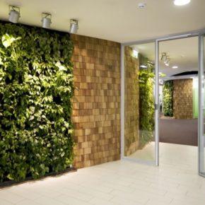 Озелененине офиса - фото (39)
