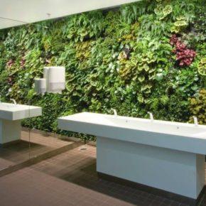 Озелененине офиса - фото (42)