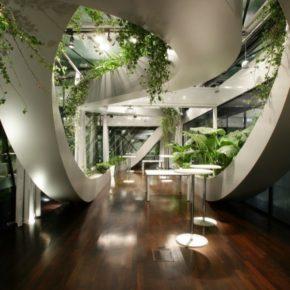 Озелененине офиса - фото (49)