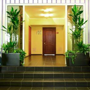Озелененине офиса - фото (58)