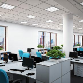 Озелененине офиса - фото (6)