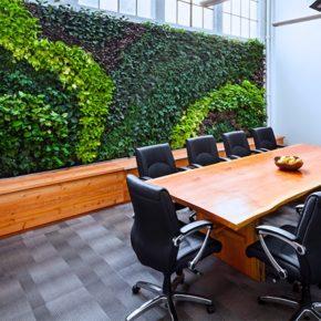Озелененине офиса - фото (60)