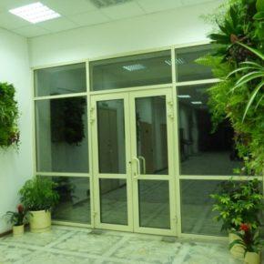 Озелененине офиса - фото (62)