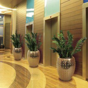 Озелененине офиса - фото (63)