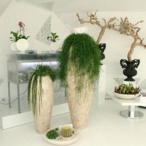 Озелененине офиса - фото (65)