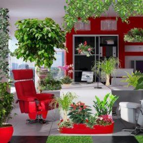 Озелененине офиса - фото (66)