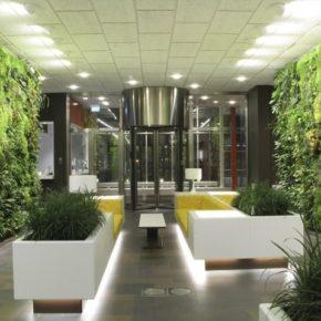 Озелененине офиса - фото (67)