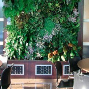 Озелененине офиса - фото (72)
