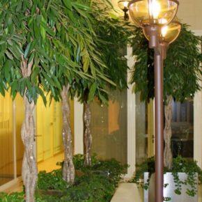 Озелененине офиса - фото (74)