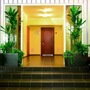 Озелененине офиса - фото (78)