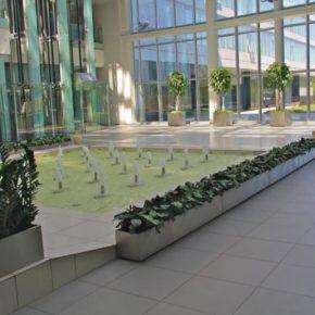 Озелененине офиса - фото (90)