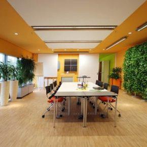 Озелененине офиса - фото (92)