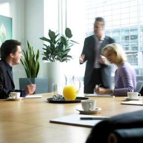 Озелененине офиса - фото (99)