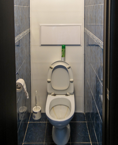 Дизайн-маленького-туалета-фото-1